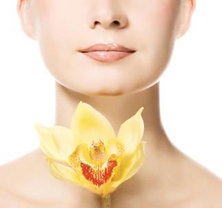 Endometriose – Doença da Mulher Moderna, Sintomas e Tratamentos
