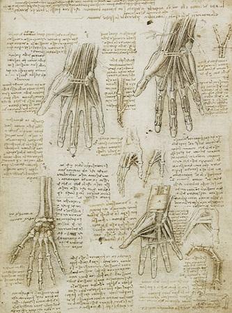 """No Renascimento, artistas como Leonardo aproximaram-se de médicos-anatomistas para retratar melhor a forma humana em pinturas e esculturas, eles foram chamados de """"artistas-anatomistas"""":"""