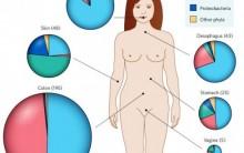 Microbiota Humana Residente – Funções, Características, Biofilme