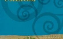 Terra Sonâmbula – Resenha do Livro de Mia Couto, Análise