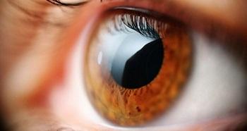 neuromielite-optica